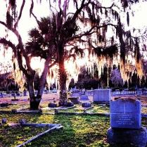 Graveyard in Sanford, Florida